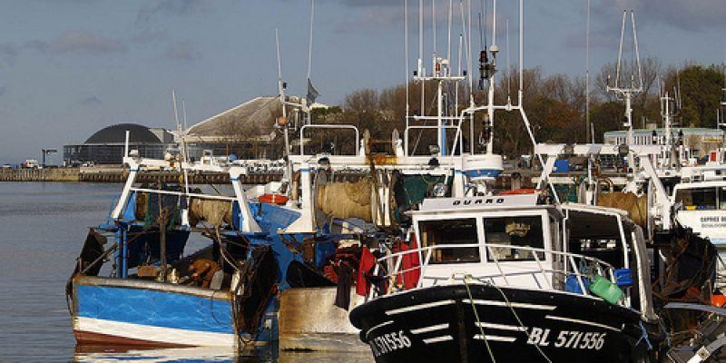 Week end dans la capitale de la c te d 39 opale boulogne sur mer 52 weekends - Port de plaisance de boulogne sur mer ...