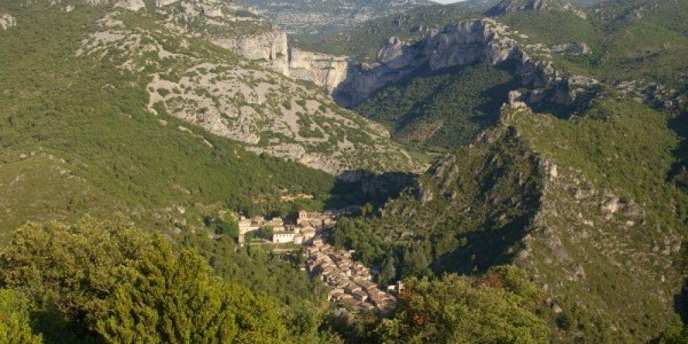 Echappée verte dans les gorges de l'Hérault