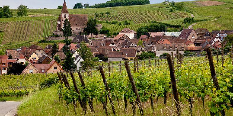 Week End Sur La Route Des Vins D Alsace De Ribeauvill 233 224