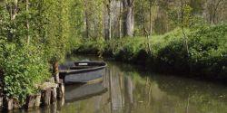 Week-end au fil de l'eau dans le Marais poitevin